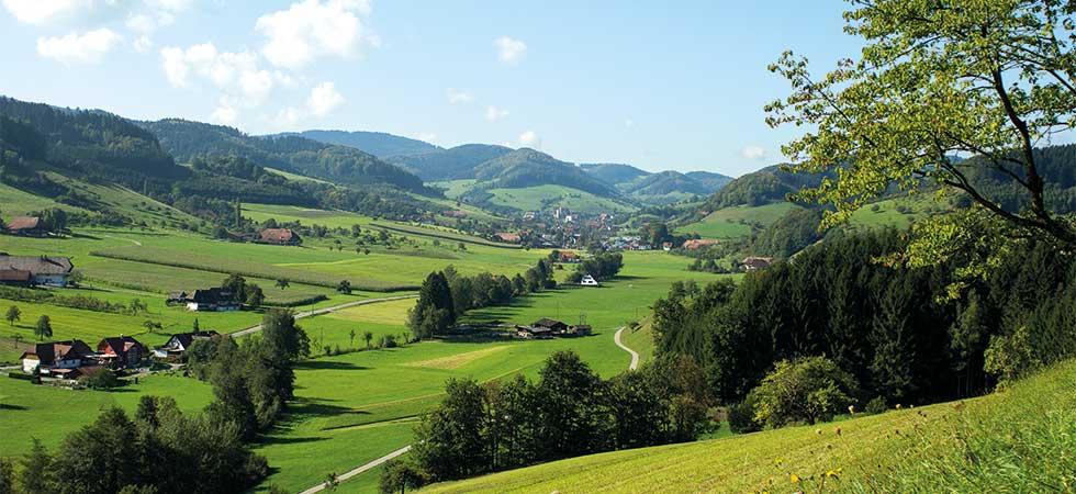 Das Tal von Welschensteinach