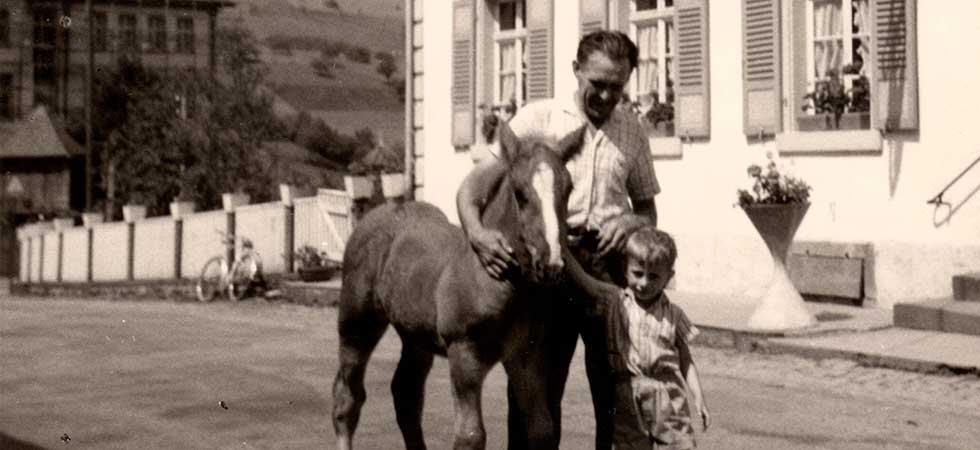 Pferde beim Gasthaus Zum Wilden Mann